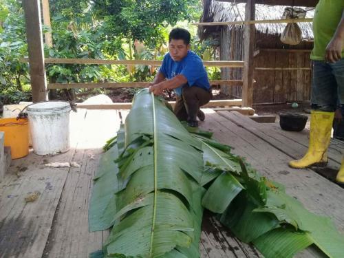 Fermenting-in-Banana-Leaves-1